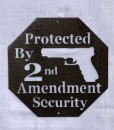 Protected by 2nd Amend1