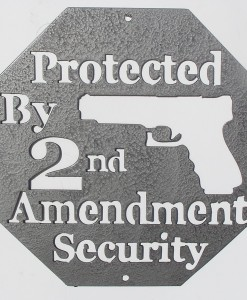 Wall Art - Protected by 2nd Amendment