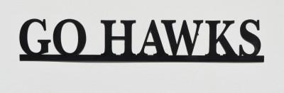 GO HAWKS1