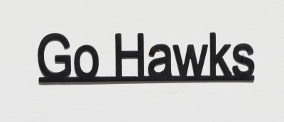 Go Hawks-lowercase1