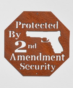 Protected by 2nd Amend3