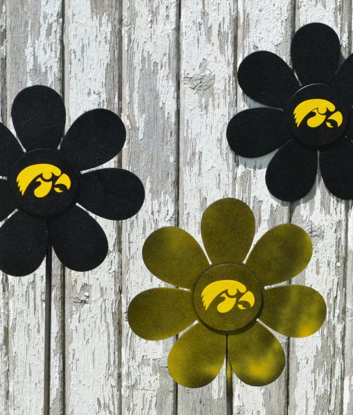 Iowa Hawkeye Flower