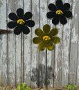 Iowa Flowers2